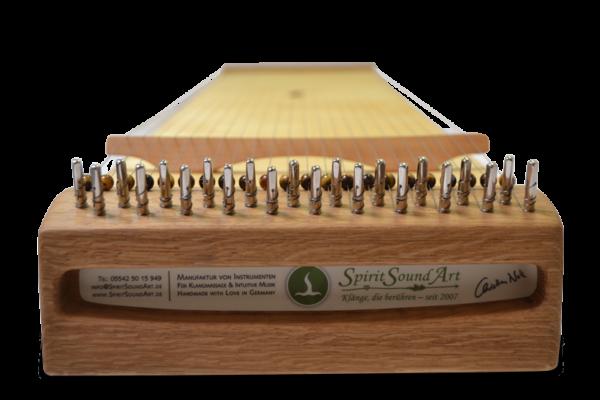 Monochord Gyde 100 Frontansicht